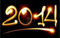 2014 in firelight